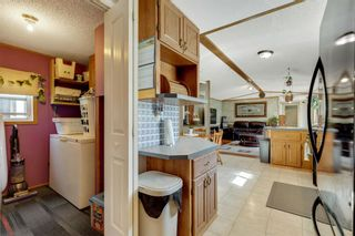 Photo 16: 249 Erin Woods Circle SE in Calgary: Erin Woods Detached for sale : MLS®# A1147067