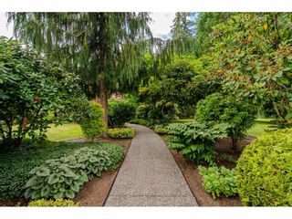Photo 37: 23495 52 Avenue in Langley: Salmon River House for sale : MLS®# R2474123