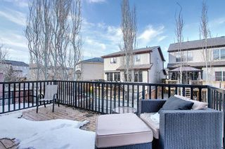 Photo 16: 900 Copperfield Boulevard SE in Calgary: Copperfield Detached for sale : MLS®# A1079249