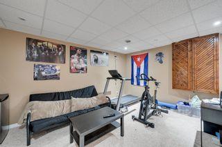 Photo 37: 11833 10A Avenue in Edmonton: Zone 16 House for sale : MLS®# E4249134