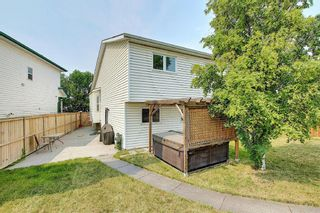 Photo 43: 94 Erin Meadow Close SE in Calgary: Erin Woods Detached for sale : MLS®# A1135362