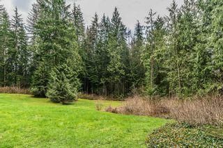 Photo 8: 12414 MCNUTT Road in Maple Ridge: Northeast House for sale : MLS®# R2560793