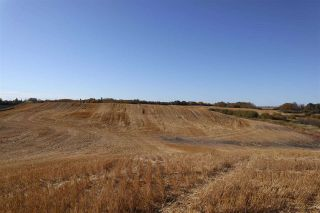 Photo 11: TWP 495 RR 232: Rural Leduc County Rural Land/Vacant Lot for sale : MLS®# E4216268