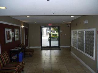 """Photo 15: 220 30525 CARDINAL Avenue in Abbotsford: Abbotsford West Condo for sale in """"Tamarind Westside"""" : MLS®# R2614517"""