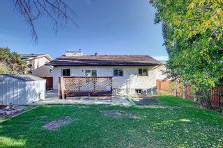 Photo 33:  in Edmonton: Zone 29 House for sale : MLS®# E4262869