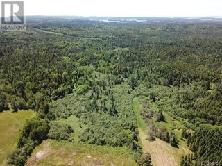 Photo 10: 100 Mount Pleasant Road in St. George: Vacant Land for sale : MLS®# NB059440