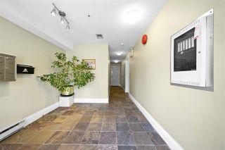 Photo 17: Kitsilano Homes For Sale