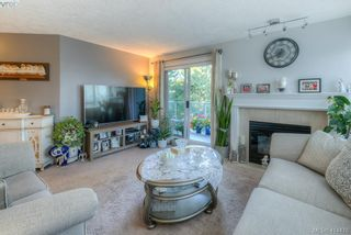 Photo 4: 309 490 Marsett Pl in VICTORIA: SW Royal Oak Condo for sale (Saanich West)  : MLS®# 822080