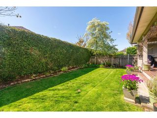 """Photo 16: 6 6177 169 Street in Surrey: Cloverdale BC Townhouse for sale in """"Northview Walk"""" (Cloverdale)  : MLS®# R2364005"""