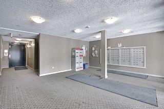 Photo 34: 317 18126 77 Street in Edmonton: Zone 28 Condo for sale : MLS®# E4266130