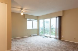 Photo 4: 205 615 Alder St in Campbell River: CR Campbell River Central Condo for sale : MLS®# 887616