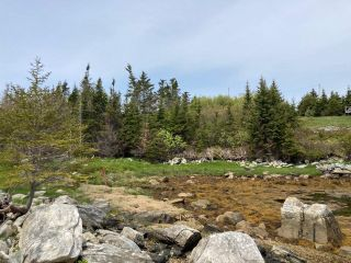 Photo 20: Lot Mushaboom Road in Mushaboom: 35-Halifax County East Vacant Land for sale (Halifax-Dartmouth)  : MLS®# 202114485