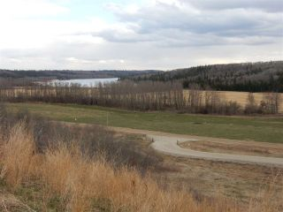 Photo 2: TWP ROAD 492 RANGE ROAD 234: Rural Leduc County Rural Land/Vacant Lot for sale : MLS®# E4218784