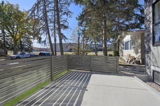 Photo 40: 2140 51 Avenue SW in Calgary: North Glenmore Park Detached for sale : MLS®# A1150170