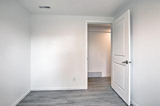 Photo 30: 2415 Vista Crescent NE in Calgary: Vista Heights Detached for sale : MLS®# A1144899