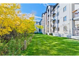 Photo 18: #3106 16969 24 ST SW in Calgary: Bridlewood Condo for sale : MLS®# C4096623