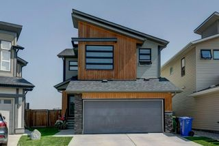 Main Photo: 235 Walden Mews SE in Calgary: Walden Detached for sale : MLS®# A1130998