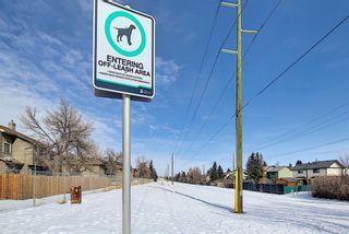 Photo 39: 2 14736 Deerfield Drive SE in Calgary: Deer Run Row/Townhouse for sale : MLS®# A1075072