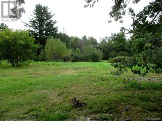 Photo 8: 198 Pleasant Street in St. Stephen: Vacant Land for sale : MLS®# NB062836