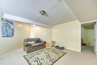 Photo 31: 23 Citadel Meadow Grove NW in Calgary: Citadel Detached for sale : MLS®# A1149022