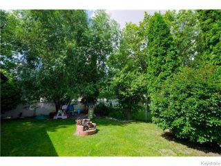 Photo 18: 542 Paufeld Drive in Winnipeg: North Kildonan Residential for sale (North East Winnipeg)  : MLS®# 1618479