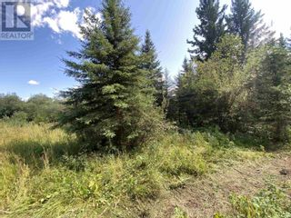 Photo 17: DL2350 TIMOTHY LAKE ROAD in Lac La Hache: Vacant Land for sale : MLS®# R2610977