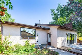 Photo 43: 331 Edgehill Drive NW in Calgary: Edgemont Detached for sale : MLS®# A1140206