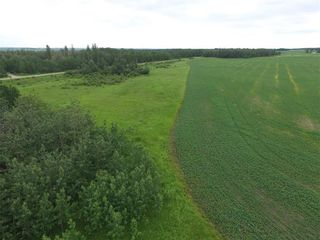 Photo 3: 33538 Rg RD 30: Rural Mountain View County Land for sale : MLS®# C4305650