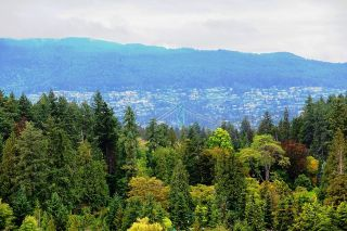 """Photo 2: 1103 1925 ALBERNI Street in Vancouver: West End VW Condo for sale in """"LAGUNA PARKSIDE"""" (Vancouver West)  : MLS®# R2618862"""