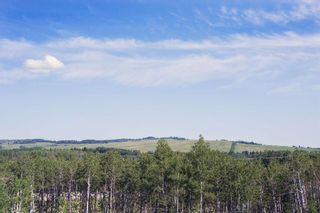 Photo 4: 423 Cottageclub Cove in Rural Rocky View County: Rural Rocky View MD Residential Land for sale : MLS®# A1128960