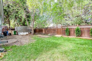 Photo 43: 7411 7 Street SW in Calgary: Kingsland Detached for sale : MLS®# A1021335