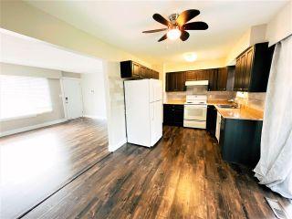Photo 6: 11613 STEEVES Street in Maple Ridge: Southwest Maple Ridge House for sale : MLS®# R2556127