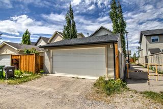 Photo 21: 254 CRAMOND Circle SE in Calgary: Cranston Detached for sale : MLS®# A1014365