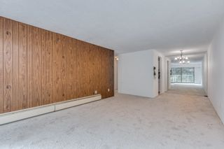 """Photo 13: 309 331 KNOX Street in New Westminster: Sapperton Condo for sale in """"WESTMOUNT ARMS"""" : MLS®# R2616946"""
