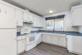 Photo 9: 155 MILLBOURNE Road E in Edmonton: Zone 29 House for sale : MLS®# E4265815