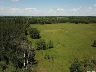 Photo 33: Larson Lake Property in Spiritwood: Residential for sale (Spiritwood Rm No. 496)  : MLS®# SK840876