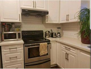 """Photo 27: 6160 GRANVILLE Avenue in Richmond: Granville House for sale in """"GRANVILLE"""" : MLS®# R2531477"""