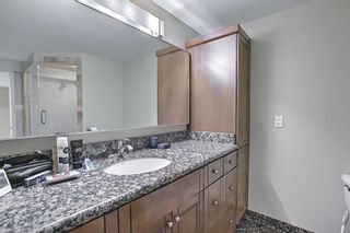 Photo 36: 56 Langton Drive SW in Calgary: North Glenmore Park Detached for sale : MLS®# A1081940