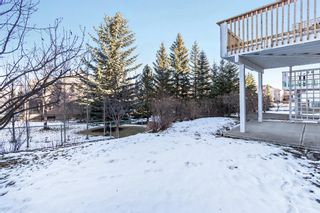 Photo 40: 217 Hamptons Gardens NW in Calgary: Hamptons Detached for sale : MLS®# A1055777