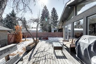 Photo 37: 10408 Fairmount Drive SE in Calgary: Willow Park Detached for sale : MLS®# A1066114