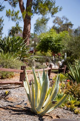 Photo 40: SOUTHEAST ESCONDIDO House for sale : 4 bedrooms : 329 Cypress Crest Ter in Escondido