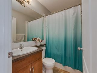 Photo 22: 180 SILVERADO Way SW in Calgary: Silverado Detached for sale : MLS®# A1016012