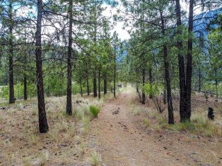 Photo 5: 1215 HIGHWAY 12: Lillooet Lots/Acreage for sale (South West)  : MLS®# 160618