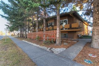Main Photo: 2009 50 Avenue SW in Calgary: North Glenmore Park Semi Detached for sale : MLS®# A1154886