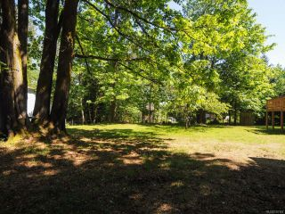 Photo 35: 8662 Whelan Rd in MERVILLE: CV Merville Black Creek House for sale (Comox Valley)  : MLS®# 730163