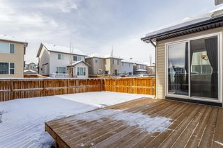 Photo 29: 1200 BRIGHTONCREST Common SE in Calgary: New Brighton Detached for sale : MLS®# A1066654