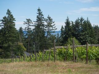 Photo 23: 840 Cherry Point Rd in COBBLE HILL: ML Cobble Hill Business for sale (Malahat & Area)  : MLS®# 843374