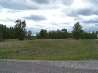 Main Photo: 48115 233 Avenue E: Rural Foothills County Land for sale : MLS®# C4258316