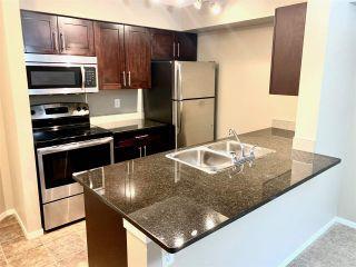 Photo 2:  in Edmonton: Zone 55 Condo for sale : MLS®# E4218089