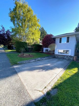 Photo 25: 420 Richmond Ave in : Vi Fairfield East House for sale (Victoria)  : MLS®# 874416